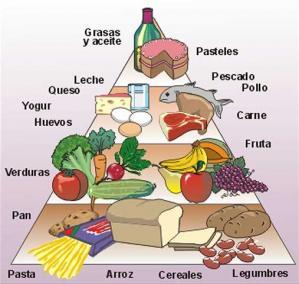 La cocina y la comida 05